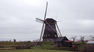 Les moulins de Kinderdijk