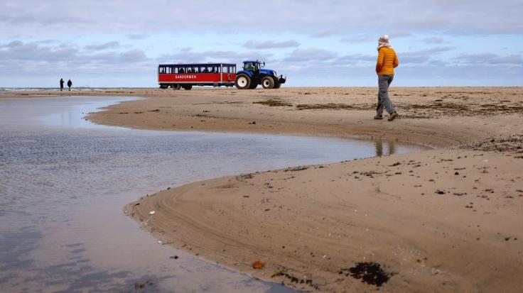 Tracteur-Bus